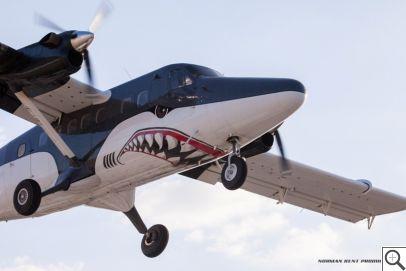 žralok z Perris